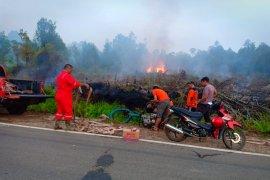 Polisi selidiki penyebab kebakaran gambut di Kalis