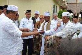 Aceh Barat sumbang 48 ekor ternak untuk warga saat Hari Raya Idul Adha