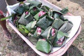 Warga Kalimanis Blitar manfaatkan daun pisang bungkus daging kurban