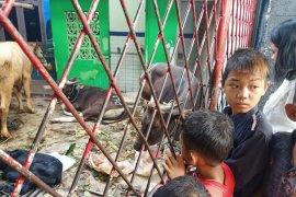 Hewan kurban banyak, tempat pengungsian korban kebakaran Tebet kekurangan pemotong k