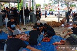 PT Timah Tbk potong 19 ekor hewan kurban di Mentok