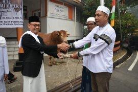 Jajaran Pemkot Pontianak salurkan kurban 19 sapi dan 3 kambing