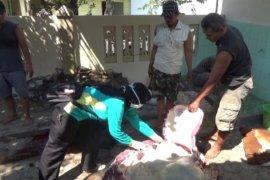 Pemkab Ngawi jamin sapi kurban bebas penyakit antraks