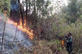 BPBD Lumajang siagakan relawan Destana antisipasi terjadinya kebakaran hutan