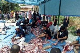 Puluhan anggota Risma di Serang ramaikan penyembelihan kurban