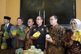 Ekspor produk hortikultura berpotensi dongkrak pertumbuhan ekonomi