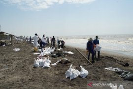 Ibu-ibu juga ikut bersihkan limbah minyak mentah di Karawang