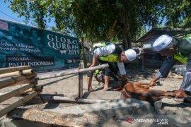 Bantuan hewan kurban Global Qorban Malaysia Page 1 Small