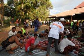 Global Qurban-ACT sembelih 15 sapi untuk warga korban gempa Lombok
