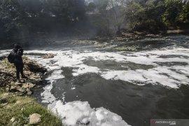 Sungai di perbatasan Indonesia - Malaysia diduga tercemar oleh kebun sawit