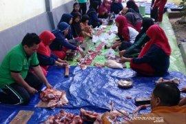 Madrasah Jembrana tanamkan semangat berkurban dalam pelajaran rutin
