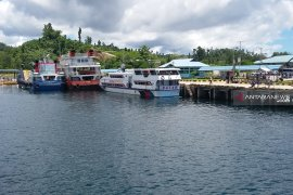 Swiss tourist missing in Papua, search halted