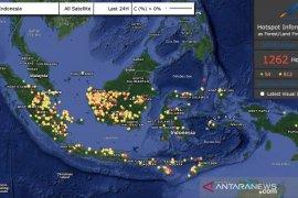 Bambang Haryo: Pemerintah Tak Mampu Atasi Karhutla