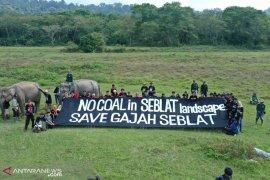 Aktivis bentang spanduk raksasa tolak tambang di Seblat