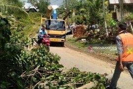PLN atasi kerusakan jaringan listik di Aceh Barat akibat puting beliung