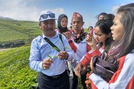 Peserta SMN NTT kunjungi Perkebunan Teh Kayu Aro