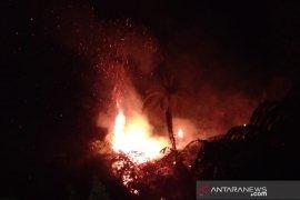 Kawasan hutan di Gunung Pogor Cianjur terbakar