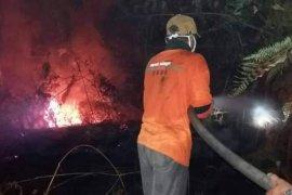 BPBD: Kabupaten Batanghari siaga karhutla, belum darurat