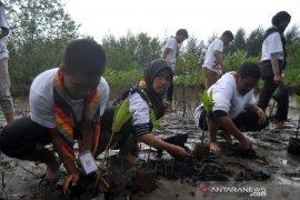 SMN Kalsel tanam mangrove dan lepas tukik di Pariaman