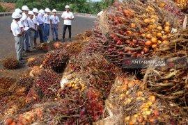 Siswa Mengenal Nusantara belajar di pabrik sawit dan Kawasan Industri Medan