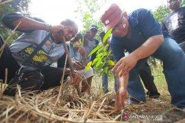 Antara tanam bibit pohon gaharu di Tahura Sultan Adam