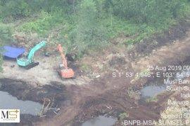 1.675 hektare areal hutan di Sumatera Selatan terbakar
