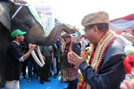 "Parade Budaya ""Lampung Culture and Tapis Carnival"" Meriah"