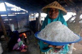 Petani garam tradisional