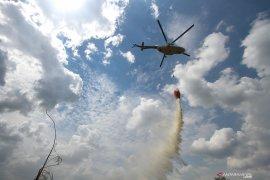 BNPB sebut bom air kurang efektif untuk atasi kebakaran hutan