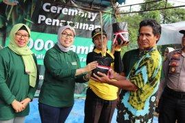 Bambu harapan masa depan bagi warga Tabalong