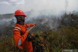358 titik panas indikasi awal kebakaran hutan terdeteksi di Sumatera