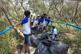 Pertamina bersih-bersih pesisir kawasan mangrove Muaragembong Bekasi