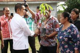 Wali Kota dan warga Pematangsiantar tanam 500 bibit pohon