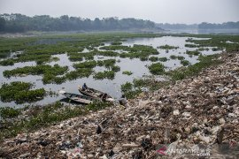 Pengurangan Eceng Gondok di Sungai Citarum