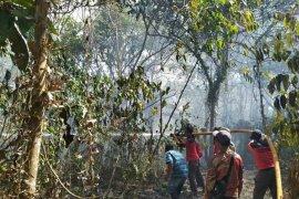 Kebakaran Lahan di Sekitar Kawasan Tahura Berhasil Dipadamkan
