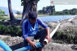 Pemkab Sigi bantu alsintan kelompok tani dua kecamatan produsen pangan