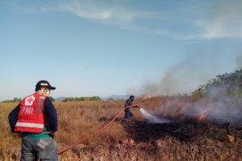 PMI Banjar terjunkan personel bantu padamkan karhutla di Kalsel