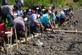 Pelindo III tanam 50.000 bibit mangrove di Pelabuhan Benoa