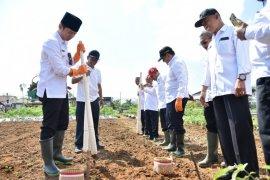 Petani Trenggalek diajak gunakan pupuk organik untuk efisiensi