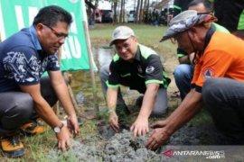 200 ribu hektare hutan di Babel rusak