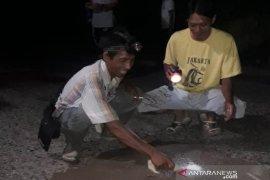 Warga Desa Haliau gotong royong tambal lubang jalan