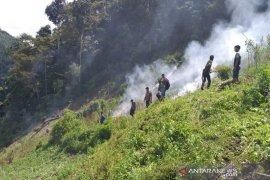 Polres Madina temukan lima hektare lahan ganja di Panyabungan Timur