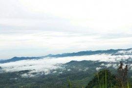 Bukit Tempurung di Sarolangun sajikan pesona awan memikat