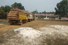 Satgas Pamtas amankan tiga unit truk kayu ilegal