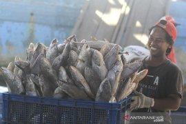 Produksi Ikan Indonesia
