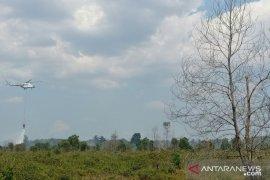 Seluruh wilayah Kalsel diselimuti asap