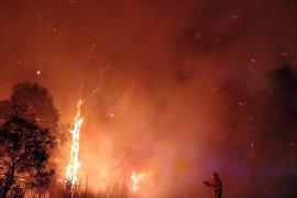 Warga tinggalkan rumah, api di luar kendali merusak ribuan hektar lahan Australia