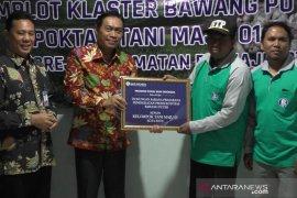 Cara Bank Indonesia Malang tekan inflasi dan impor bawang putih