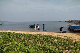 Mahasiswa Untan promosikan wisata Temajuk lewat media sosial