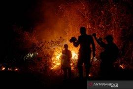 Kebakaran hutan di Gowa Page 2 Small